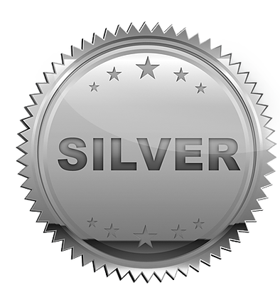 Icon of a silver medal